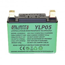 Aliant YLP05 5.0 AH ALICHEM Lifepo4 Battery
