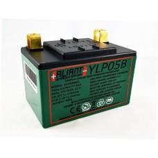 Aliant YLP05B 5.0 AH ALICHEM Lifepo4 Battery