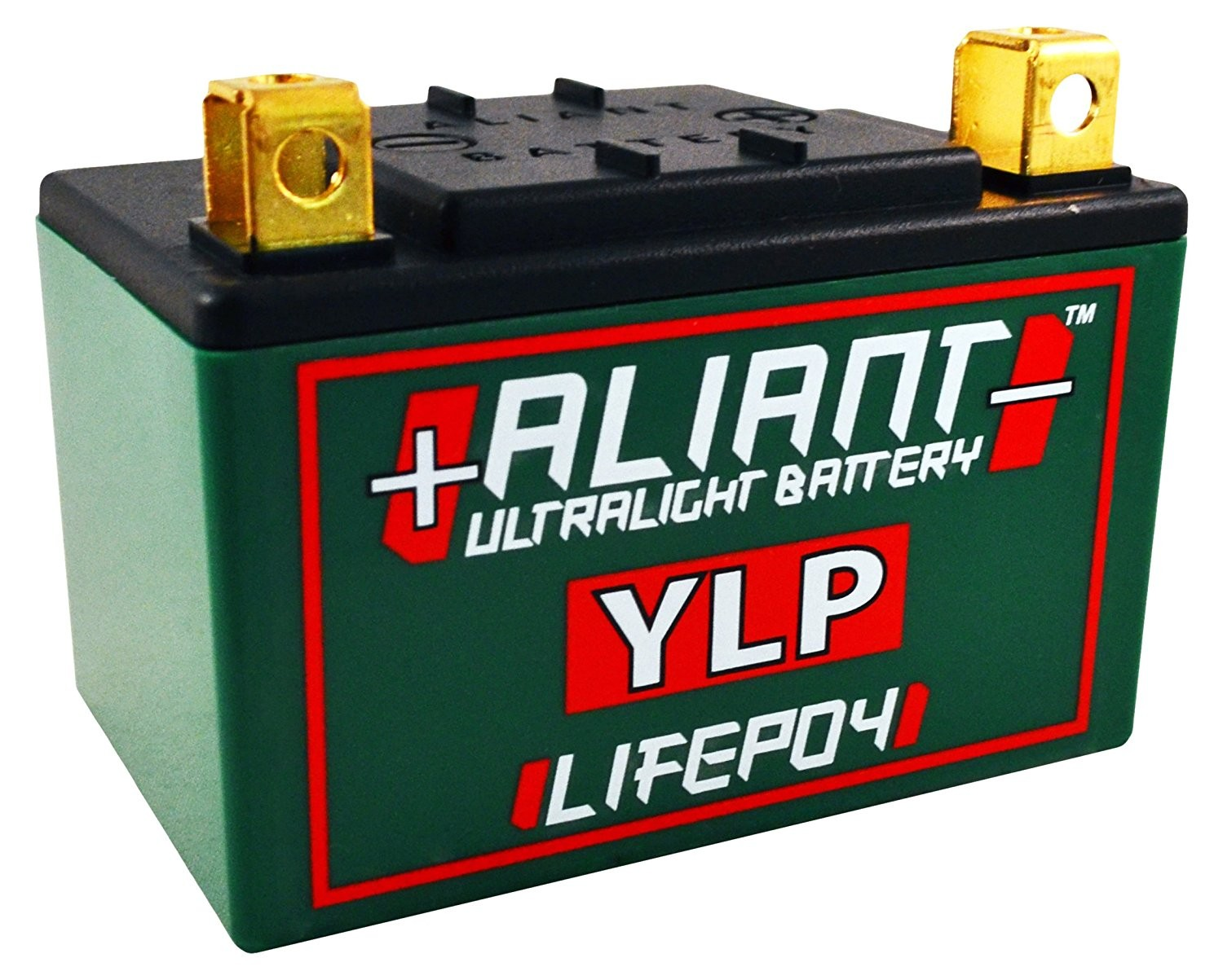 Aliant YLP05B 5.0 AH ALICHEM Lifepo4 Battery