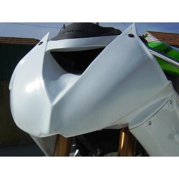 2008-2010 Kawasaki ZX-10R Lacomoto Racing Bodywork