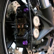 Pro-Bolt Titanium Front Brake Caliper Mount Bolt Kit, Kawasaki, Suzuki, Yamaha.